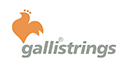 Galli Strings S.r.l.